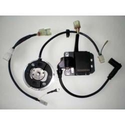 Rotor boxitech con pulsador