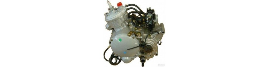 Motor Minarelli AM