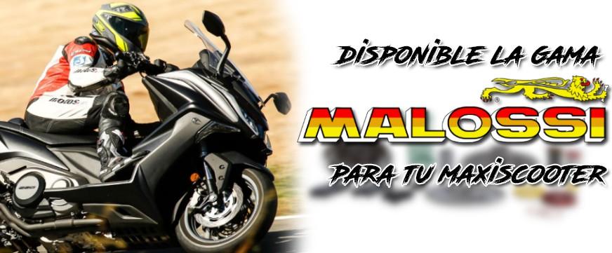 Maxiscooter Malossi